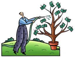 Tending the money tree