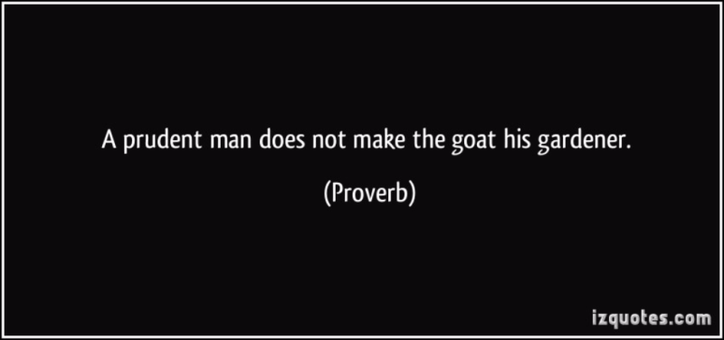 Quote-a-prudent-man-does-not-make-the-goat-his-gardener-proverbs-319722